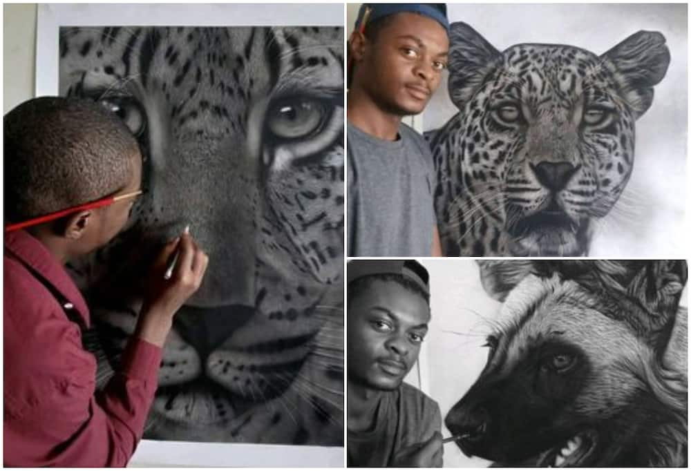 Ricky Dampers: Wildlife artist who creates awareness for animals with his paintings, showcases artworks