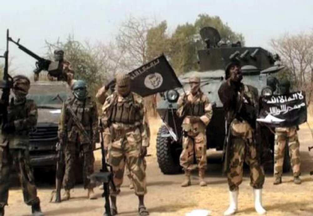 Boko Haram ta taba zaben kwamishina a Borno, dan jarida ya tona asirin tushen ta'addanci