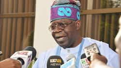 2023 presidency: Uncertainty as APC suspends members for supporting Tinubu's group