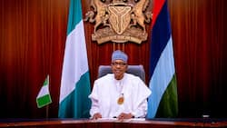 I will prosecute and jail them: 7 Key statements made by President Buhari in recent Interview