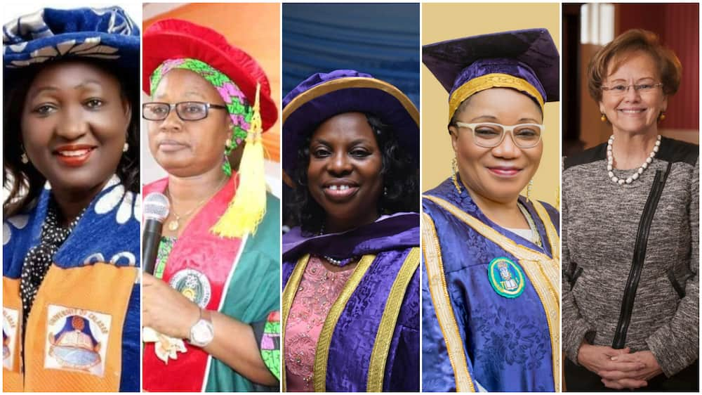 Out of 212 universities in Nigeria, there are only 11 female VCs - Report reveals