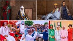5 things that make President Buhari son's wedding to Emir of Bichi's daughter the talk of town