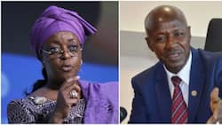 What Magu did to delay Diezani's extradition from UK - Presidential panel