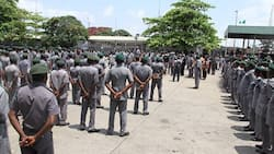 We offered bandits bags of rice for safety, Customs official confesses