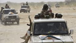 Nigerien troops reportedly rescue Nigerian soldiers from armed bandits