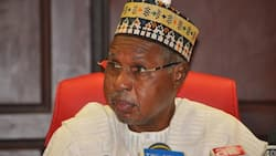 Rising Insecurity: North-West Governors deploy vigilantes in communities