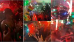 Cross, Angel, other BBNaija stars party hard as they storm Tolani Baj's reggae-themed birthday party