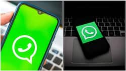 This is what will happen to your WhatsApp messages after 7 days - Company gives update
