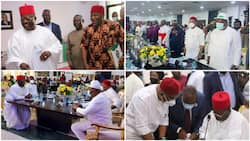 BREAKING: Southeast governors take final decision on IPOB's sit-at-home, ignore Nnamdi Kanu