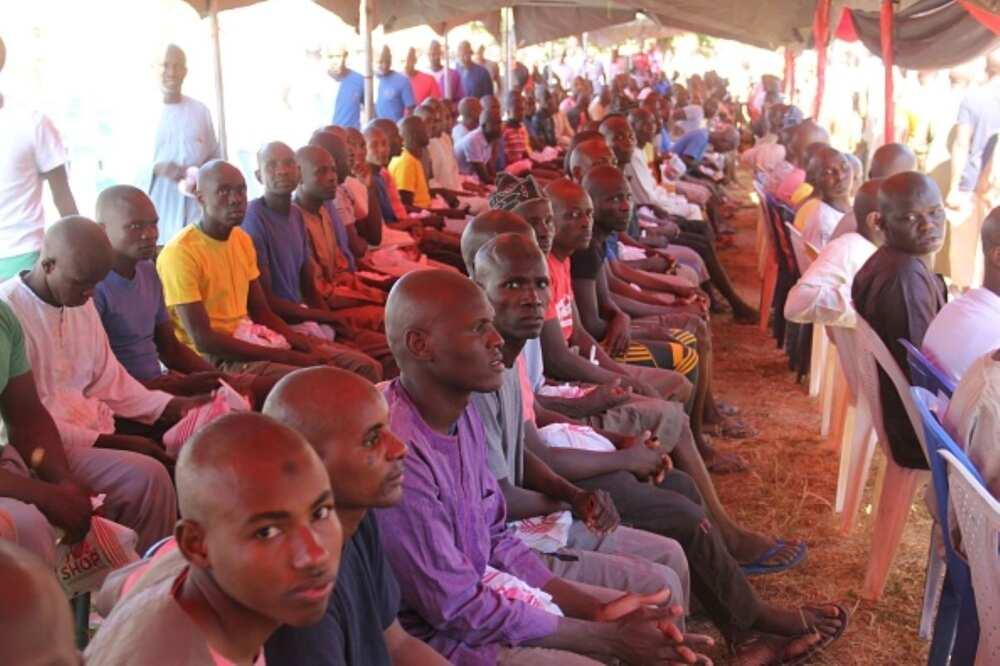 4 reasons why Boko Haram terrorists are surrendering enmasse