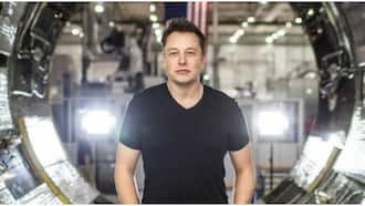 Network providers trying to stop Elon Musk's Nigerian-bound company, Starlink
