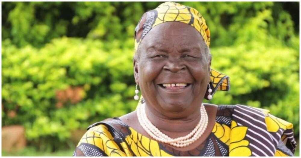 Former United States President Barack Obama's grandmother Mama Sarah Anyango Obama. Photo: Raila Odinga.