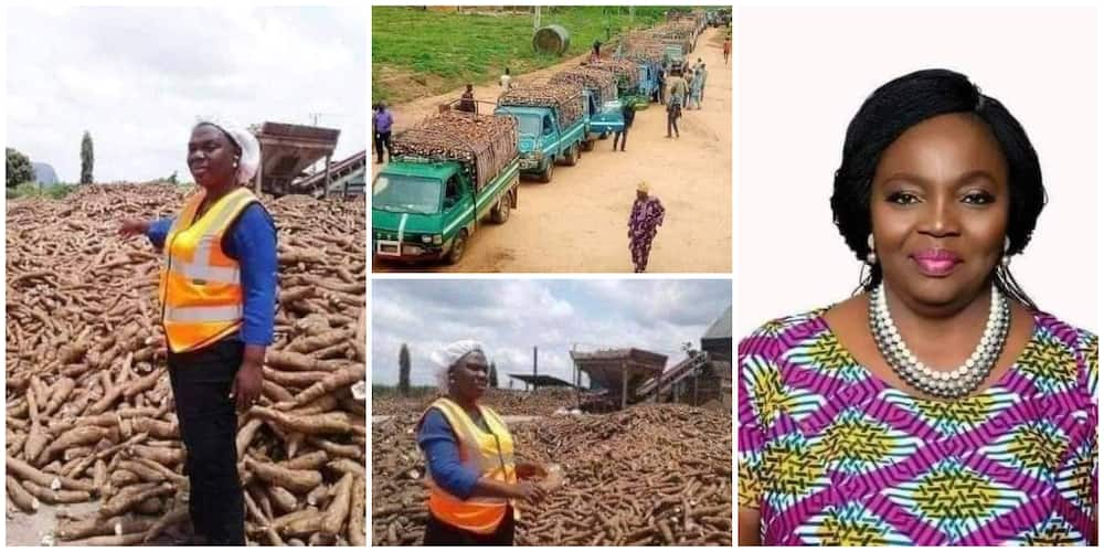 Meet Yemisi Iranloye, the Nigerian lady dubbed queen of cassava