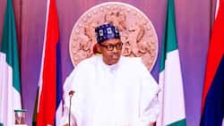 President Buhari sends final warning to bandits, kidnappers, says sinners shall not go unpunished
