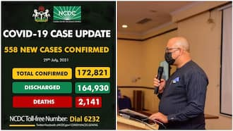 List of affected states as COVID-19 spike continues in Nigeria, 558 new cases confirmed, 2 deaths recorded