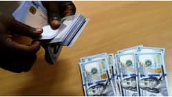 CBN extends Naira for Dollar promo until further notice