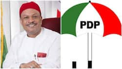 Breaking: Southeast chieftain emerges consensus candidate for PDP national secretary