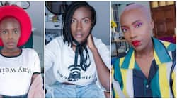I don't want to give birth or be a mum, I just want to be a mother of cats; Lady blows hot, Nigerians react