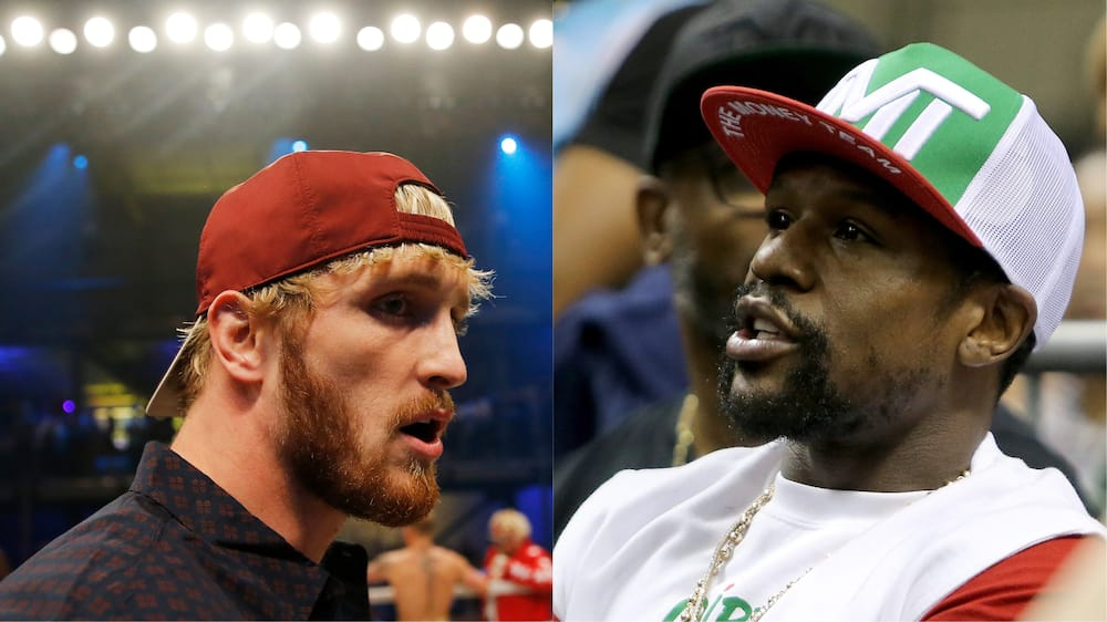 Logan Paul and Floyd Mayweather in action