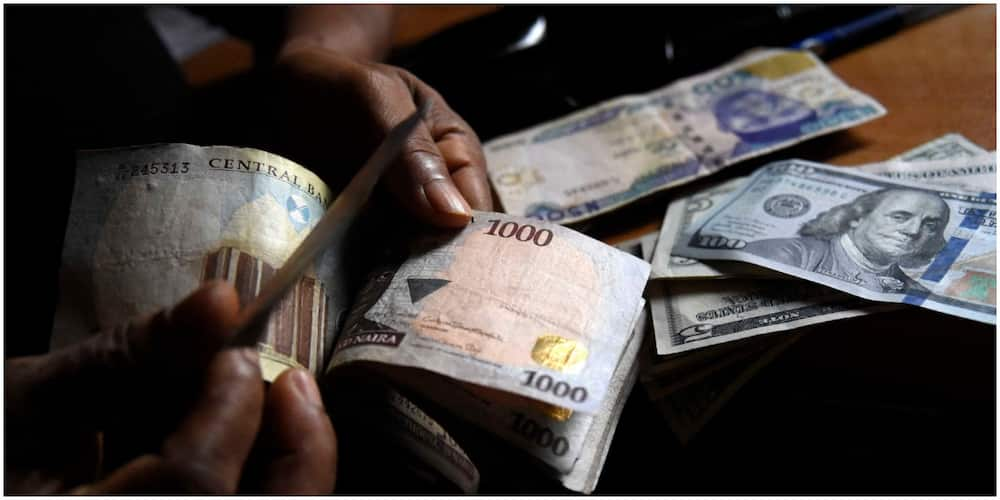 Sales of dollars won't stop amid forex ban by CBN, Bureau de Change association has stated