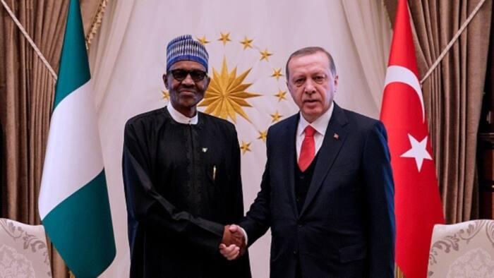 Turkish president speaks with Buhari, seeks Nigeria's support for Palestine