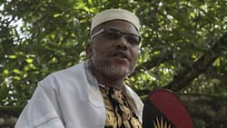 Don't come for your parents' burial, Igbo group begs Nnamdi Kanu