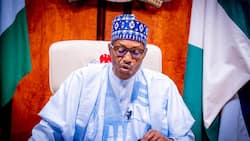 Analysing President Buhari's efforts to lift 100 million Nigerians out of poverty