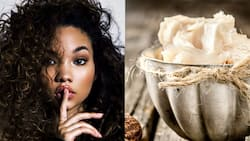 Mind blowing benefits of shea butter for hair