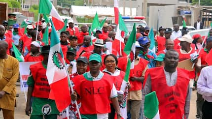 N30,000 minimum wage: NLC reacts to threat by governors to sack workers
