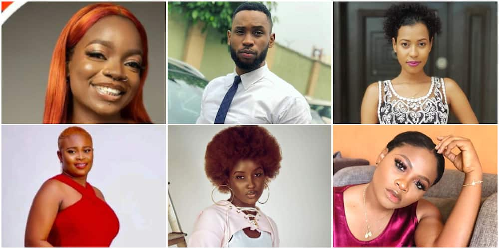 BBNaija: Arin, Tega, 4 Other Housemates Nominated for Possible Eviction