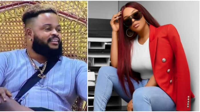 BBNaija: What if Whitemoney is married with kids? Toke Makinwa speaks on distance he keeps from the ladies