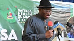 Why bullets alone can't stop bandits - Goodluck Jonathan