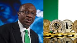 """Nigerians react as CBN says cryptocurrency is activities of players from """"dark world"""" in viral video"""