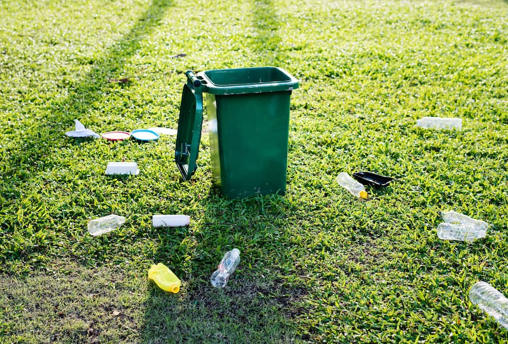 Most successful small business ideas - Waste management