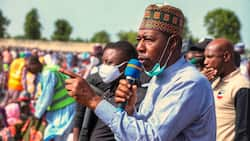 Heart of Gold! This is how Borno state governor alleviates the pain of internally displaced persons