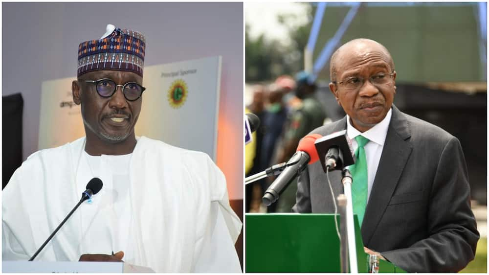 Reps Panel Recommend Arrest of CBN Governor, NNPC Boss and Other Top Buhari's Appointees