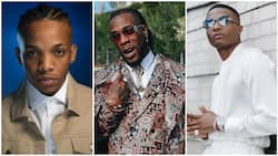 I no even get album or EP - Tekno reacts as he ranks ahead of Wizkid, Burna Boy on YouTube
