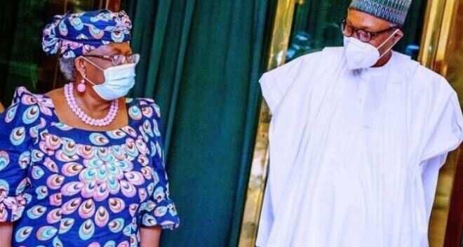 Zaben WTO: Ka taimaka ka yi min kamfen a wurin shugabannin duniya - NOI ta roki Buhari