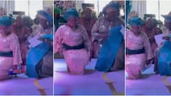 They're elderly Cardi B: Nigerians stunned as 2 middle-aged women whine their waists while bending at owanbe