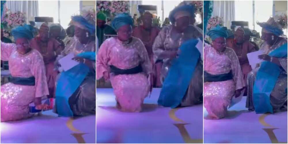 Wedding comperes