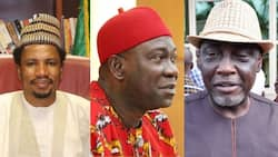 6 Nigerian senators who might become state governors in 2023