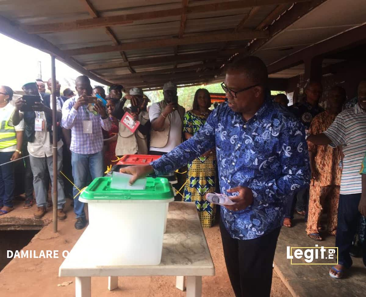 What Peter Obi said about EU report on presidential election