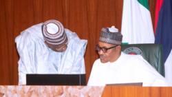 Boko Haram: Yadda 'yan Najeriya za su kawo karshen rashin tsaro - FG