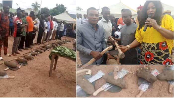 Outrage as local government chairman in Cross River empowers farmers each with one yam, hoe and cutlass