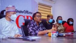 CSOs lament over rising cases of violence against women in Nigeria