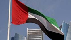 500 Nigerians stranded 4 months after UAE declines renewal of work visas