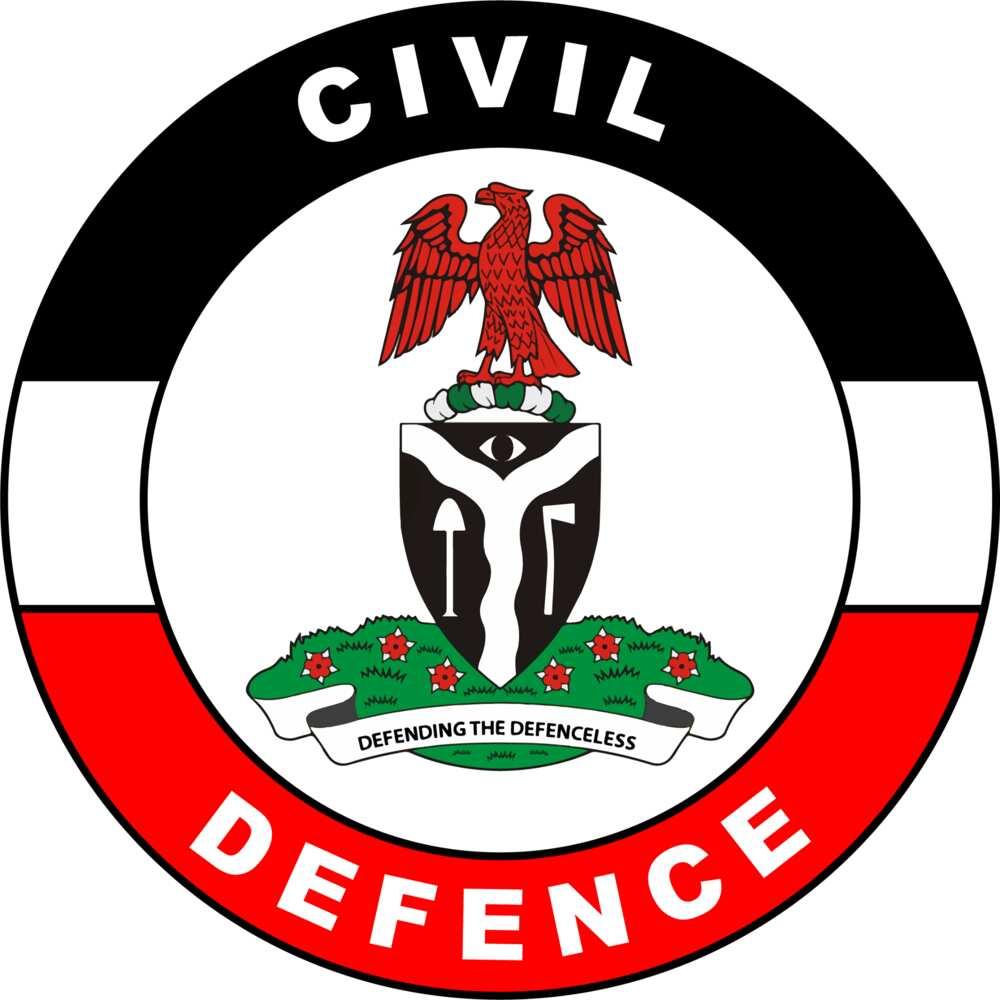 Nigerian Civil Defence logo