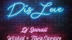 You will not be able to resist DJ Spinall – Dis Love