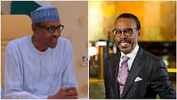 Minimum wage: Buhari inaugurates technical committee, appoints Rewane as chairman (full list)
