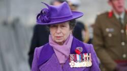 Princesse Anne du Royaume-Uni: biographie, photos, mariage, actus